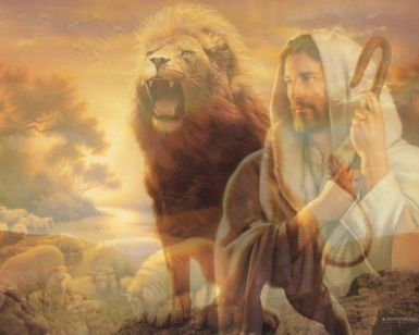 ae011870997e634582cff7b9c9178fba--lion-of-judah-the-lion-king