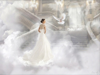 bride of YAHUSHUA with dove image