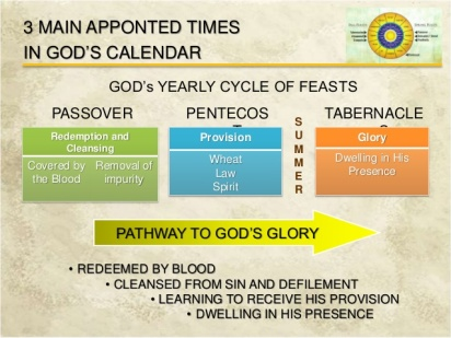 Image result for the tabernacle of moses and GOD'S APPOINTED TIMES similarities images