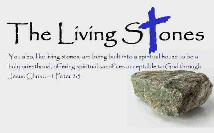 Living-Stones-icon image 3