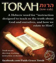 torah image