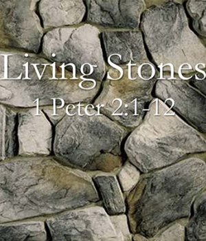 living-stones image 1