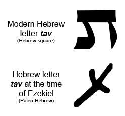 hebrewtav