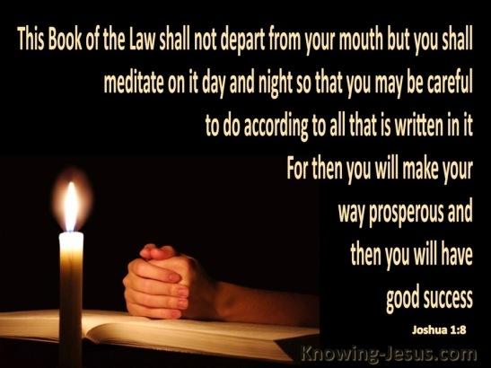 Joshua 1-8 Meditate on Gods Word-gold.jpg