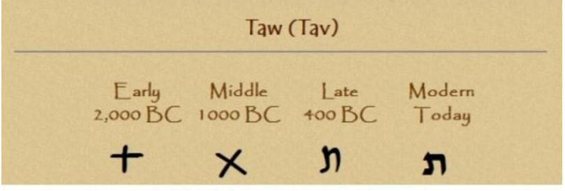 tav-d7aa