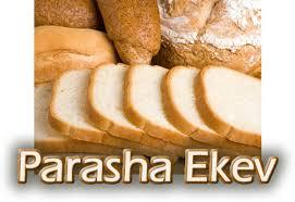 """Résultat de recherche d'images pour """"ekev"""""""