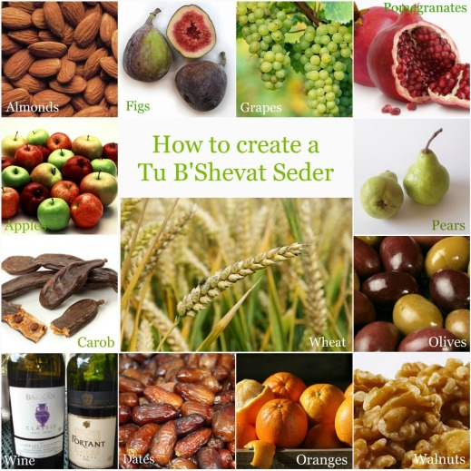 Image result for tu bshevat seder images