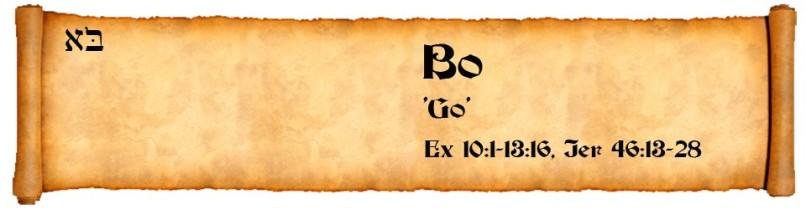 Bo-Header-960x250