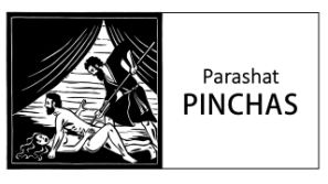 Image result for pinchas torah portion images
